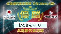全国都道府県対抗eスポーツ選手権 2019 IBARAKI 北海道代表決定戦 結果